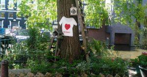 hart aan de boom , onbekendegracht amsterdam