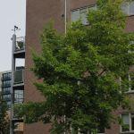 windroosplein amsterdam